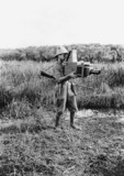 A R Dugmore using large reflex camera to photograph wildlife in Africa, 1909.