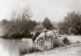 'Horses drinking at pond', c 1890s.