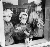 Animal technicians holding cat, mice and rabbit, 22 May 1968.