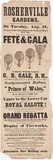 Handbill advertising Gale's balloon ascent, 17 August 1847.
