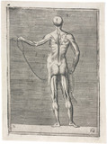Anatomical study of male musculature; man holding a rope, c 1555.