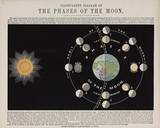 'Transparent diagram of the phases of the moon', c 1850.