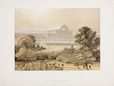 The Crystal Palace from the Rosery, c 1855.