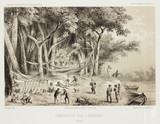 Camp on the River Araguay, Brazil, c 1843-1847.