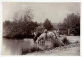 'Horses drinking at pond', c 1890.