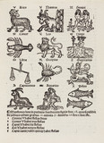 The Twelve Signs of the Zodiac, 1489.