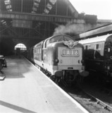 Deltic locomotive with 'Flying Scotsman' train at King's Cross, 9 March 1964.