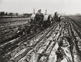 Fordson tractors hauling two-furrow and three-furrow Ransome ploughs, c 1942.