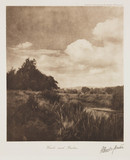'Woods and Rushes', c 1895.