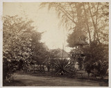 View of a garden, Batavia, United States, mid-late 19th century.