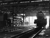 Two Pacific 4-6-2 express locomotives in Polmadie engine shed, 18 July 1961.