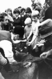 Children being given a stag's liver, October 1979.