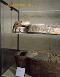 Sarcophagus containing adult human mummy, Fayyum, Egypt, 323BC-31AD.