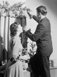 Couple putting up Christmas decorations, c 1949.