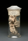 Jar of chicle or chewing gum, Central American, 1850-1900.