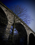 Arthington Viaduct, near Leeds, West Yorkshire, 2007.