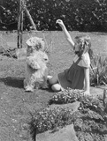 """Girl playing with a dog in a garden, 1949."""