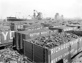 """Wagons full of coal at Birkenhead Docks, Merseyside, 9 May 1924."""