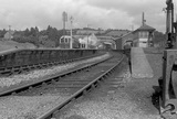 Dulverton, looking west from signal box, 4 August 1951