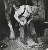 A blacksmith shoeing a horse, 1930s