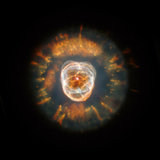 Hubble Reopens Eye on the Universe