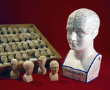 Fowler's phrenological head and a case of sixty phrenological heads, 1831-1896.
