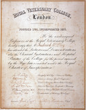 Royal Veterinary College certificate (MRCVS), 1878.