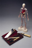 Post mortem surgical instrument set, 1783-1844, and 'Visible Man', 1993.