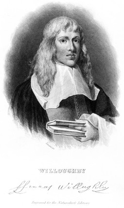Francis Willoughby, naturalist, conservationist and biologist, c 1660s.