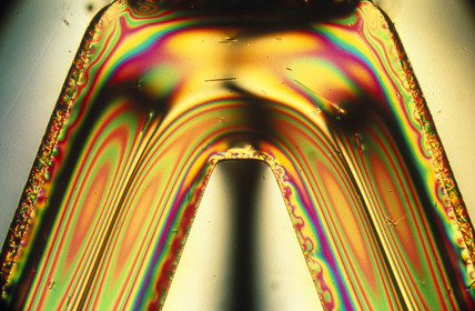 Engineering polymer. Light micrograph in cr