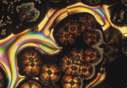 Ascorbic acid/sodium mix, light micrograph, 1990s.
