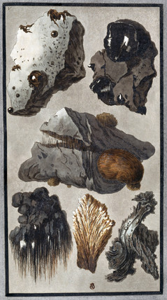 Volcanic rocks from Mount Vesuvius, 1779.