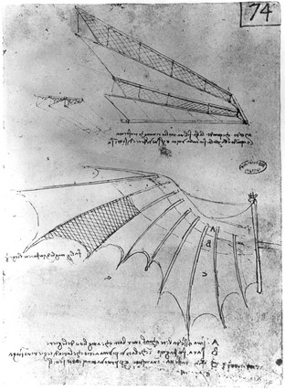 Designs for the wings of a flying machine, late 15th century.