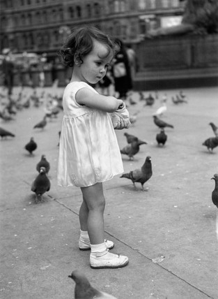 Small girl feeding the pigeons in Trafalgar Square, London, c 1930s.
