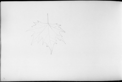 Sketch by Fox Talbot, English, early 19th century.