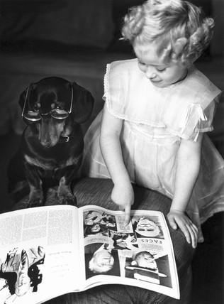 Young girl teaching a bespectacled dog to r