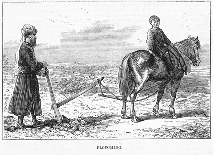 'Ploughing' in Eastern Turkestan, c 1870s.