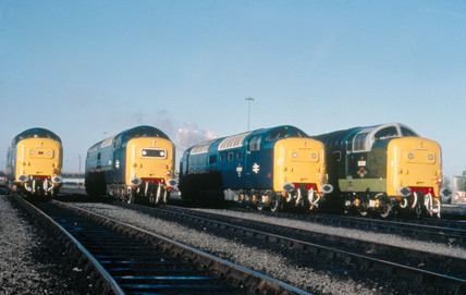 Four diesel Clas 55 Deltic Locomotives, No
