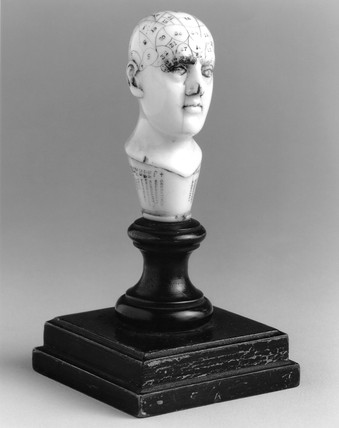 Ivory phrenological head, 1830-1890.
