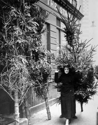 Woman carrying a christmas tree, Covent Garden, 27 November 1936.