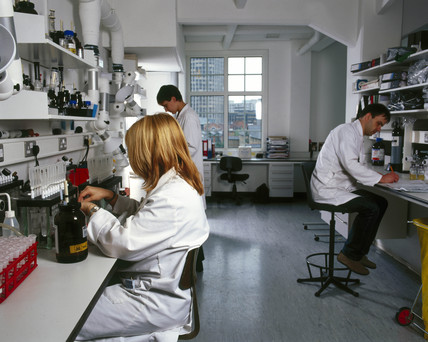 The Drug Control Centre, King's College, London, 2000.
