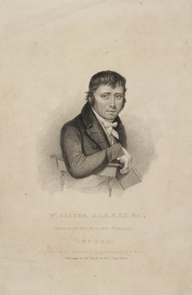 William Baxter, ALS FHS, British botanist, c 1820s.