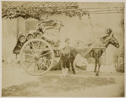 A deflated balloon being carried on a horse-drawn cart, 1885-1890.