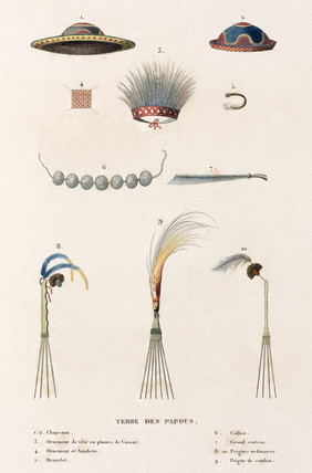 Hats, combs and other artifacts from 'the Land of the Papuans', 1822-1825.