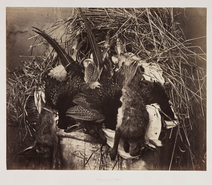 'Fur and Feathers', c 1859.