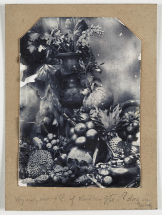 Still life with tropical fruits, vase and flowers, Java, c. 1866.