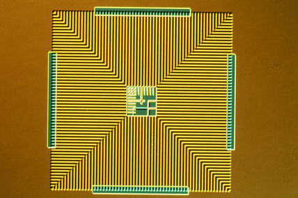 Silicon wafer. Light micrograph in differen