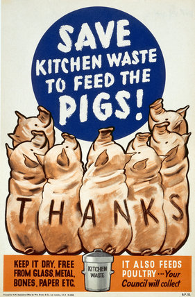 Save Kitchen Waste to Feed the Pigs