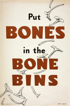 Put Bones in the Bone Bin