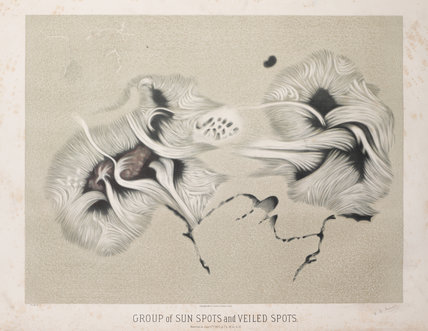 Lithograph in colour, in original binder: Group of sunspots and veiled spots; observed 17 June 1875.